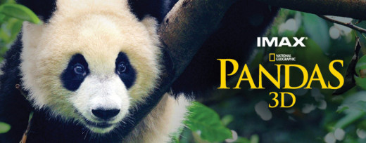 Cute film - great to see the work being done for the pandas