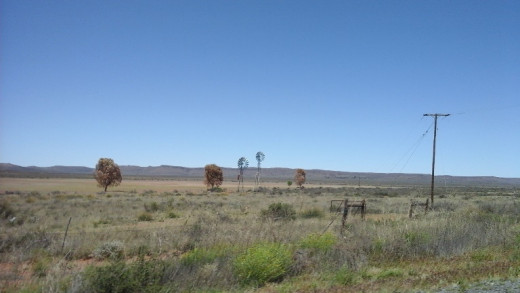 Great Karoo between Colesberg and Beaufort West