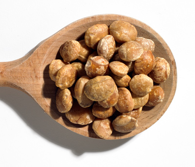 Inca peanuts.  Learn about them in Devika's new book.