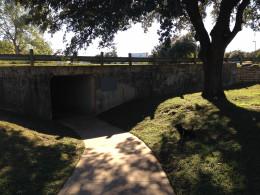 Walking trail at Davis Spring  Park (The Trailhead)  Austin Texas