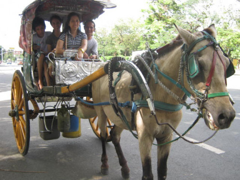 An old mode of transportation in the Philippines.  A horse-drawn rig or haise