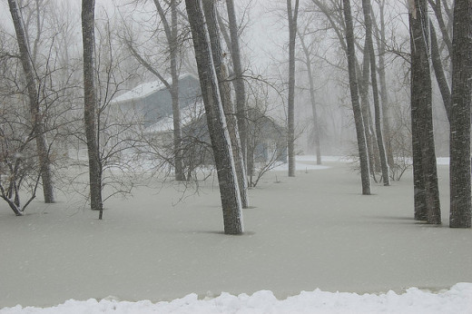 Bismarck averages almost 50 inches of snow a year.