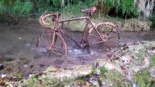 Petrified Bike