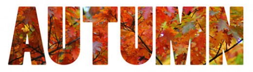 Autumn Stylized Lettering with Fall Leaves Fill