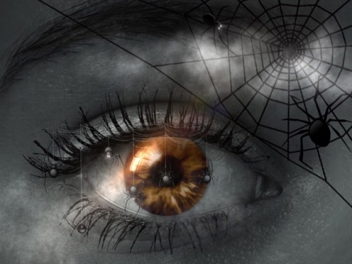 A Womanly Eye Looks At A Spider.