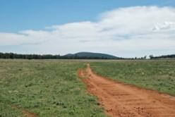 A country road through a farm field