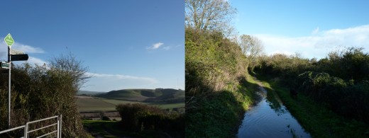 Left- The Whitelane sign, with Garstons in the background. Right- The Tennyson Trail