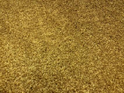 Texture style carpet. By far the most popular style choice made by homeowners. This carpet has a face weight of 55 ounces and is made of Triexta.  This carpet would hold up very well in residential high traffic areas.
