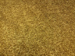 Making the Best Choice When Purchasing Carpet for Your Home