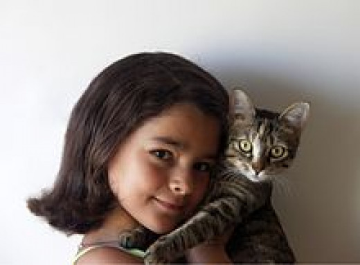 Young Girls & Cats go together well.
