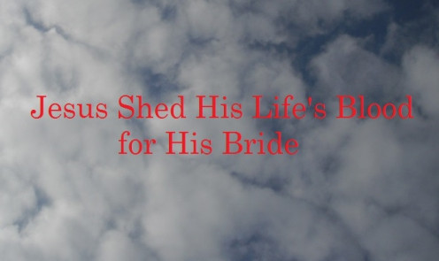 Jesus shed His Blood for His Bride.