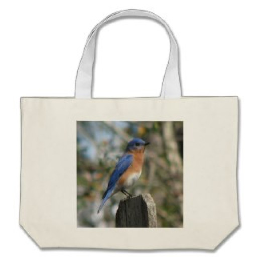 Put a bluebird house in this bag and a birder will be over joyed.