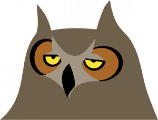 This is the exact face I'm making right now. Yes, I AM cartoon owl.