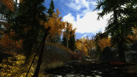 Forests return in Skyrim, but this time they do not cover the world.