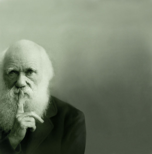 One would be foolish not to accept, or at least respect, what Darwin has stated.  If you don't stop and take assessments of what you have and what you need in order to survive, you will not succeed.