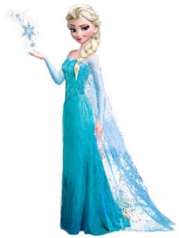 Elsa Costume From the Hit Movie Frozen - 2014 gift for girls
