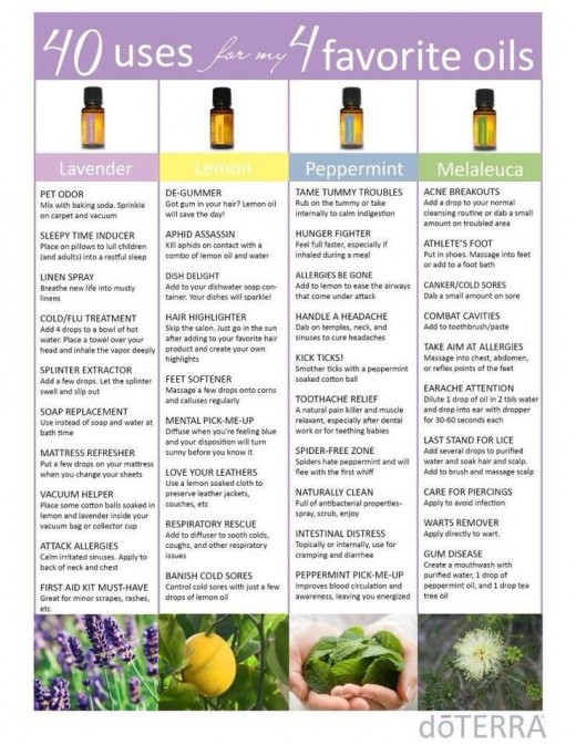 Make Your Own Fragrances and Cleaning Products with Essential Oils