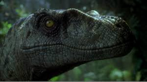 All new Dinosaurs appear in the Jurassic Park sequel entitled The Lost World which is based on the Michael Crichton book of the same name.