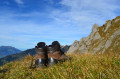 Hiking Boots & Shoes for Men: Top 5 Lightweight Picks & Reviews