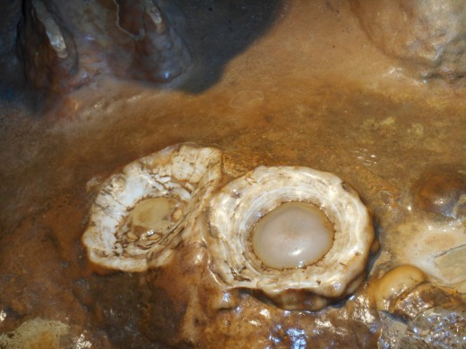 "This is the ""egg"" formations that I talked about. They are a result of broken stalagmites."