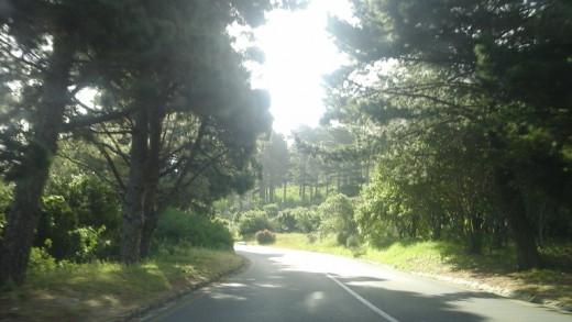 From Noordhoek to Cape Town, the beginning of Chapmans' Peak Drive