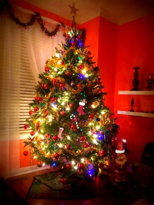 Fresh Christmas tree all lit up and smelling good. ~
