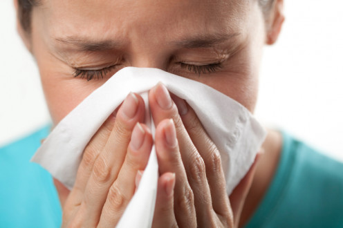 Head cold or common cold