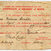 Irish Ancestry - How to Use Vital Records and Where to Find Them