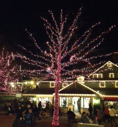 Peddler's Village The Grand Illumination