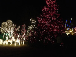 Holiday Celebration of Lights at Peddlers Village in Lahaska Pa