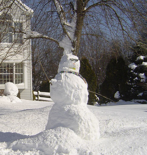 Homemade Snowman