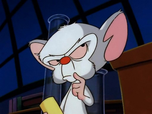 Brain the mouse thinking
