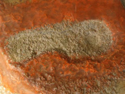 Footprint of Lord Rama on stone