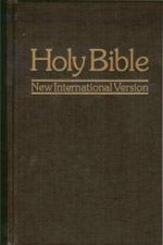 I personally use the NIV for my blogs and devotions.  I will oftentimes use my husbands NKJV (New King James Version) Bible to help with some of the more complex wordings.