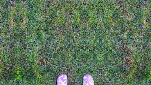 This is what grass would look like while tripping