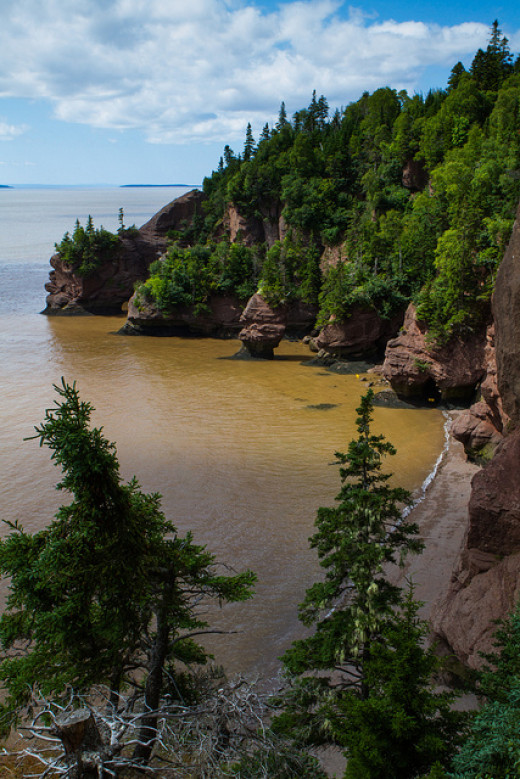 The water level around the Hopewell Rocks can rise over 40' at high tide. In most other places of the world high tide is only about 3'.