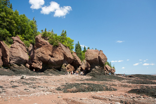 This view of the Hopewell Rocks is only obtainable during low tide.  At any other time of day this spot is under nearly four stories of water.