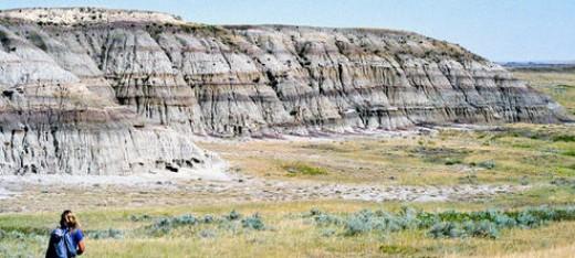 """The plateau where Sue found """"Sue"""""""