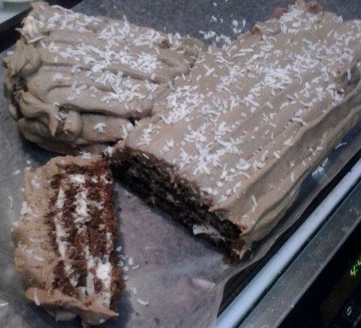 Finished Yule Log with a bit of coconut snow.