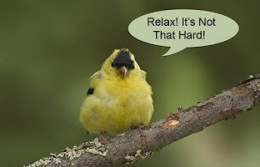 Learn to relax to stay healthy