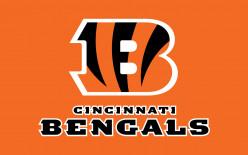 Cincinnati Bengals Sign Ray Rice