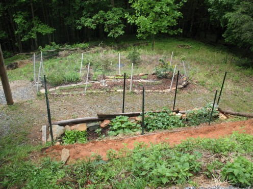 This little garden near Blowing Rock, NC is proof that you don't need a huge space to grow oregano, fresh tomatoes, onions, garlic, and beans.