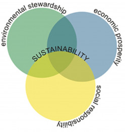 How Sustainable Are You
