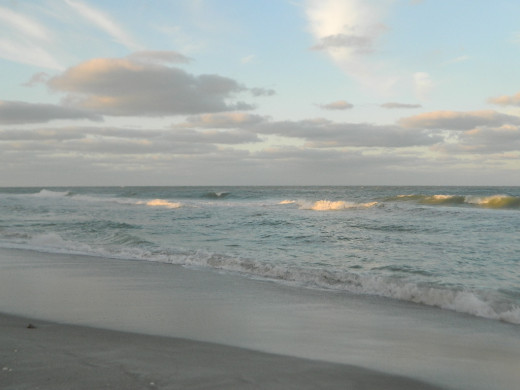 Down by the waters of Venice Beach  Florida...