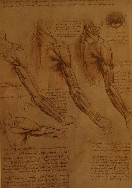 A page from DaVinci's notebooks.