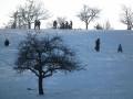 Winter Memories/Hub Page Challenge