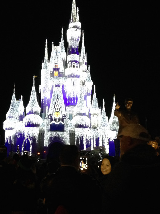 Cinderella's Castle light up with millions of lights.