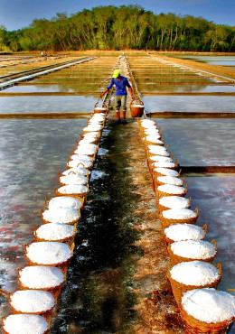 Salt Farm in Pangasinan, Philippines (Photo credit: Pixoto.com)
