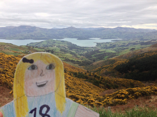 Flat Cami at the Banks Peninsula - Akarora, NZ