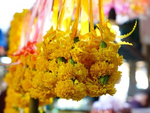 Flowers at the open air market.